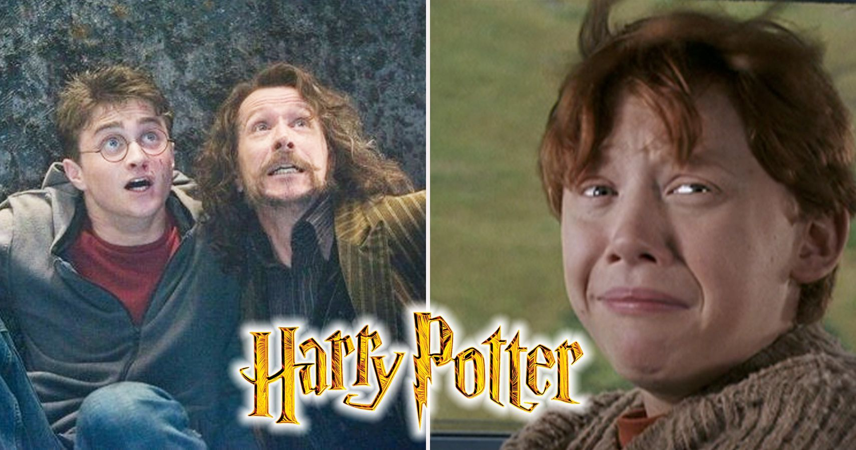 25 Incredible Harry Potter Fan Theories (That Actually Got