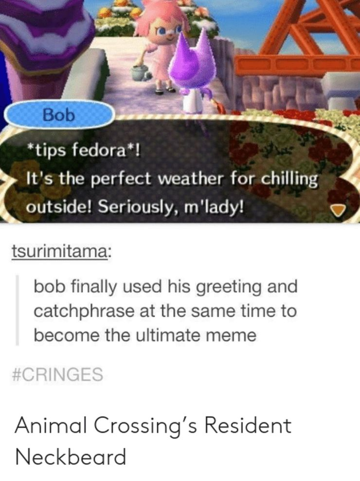 Animal Crossing New Horizons 10 Hilarious Bob The Cat Memes