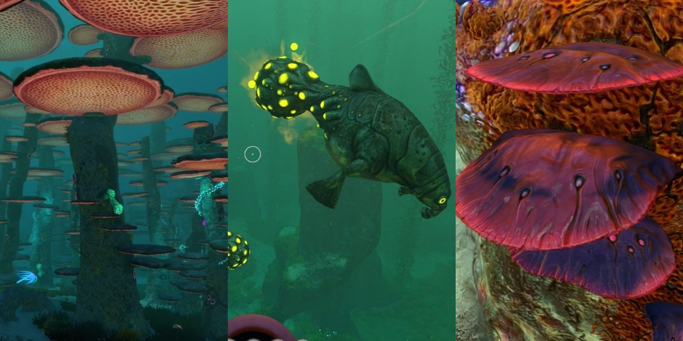 Subnautica All Of The Raw Materials Where To Find Them Game Thought Com