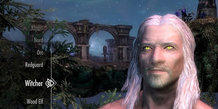 Skyrim Now Has A Playable Witcher Race
